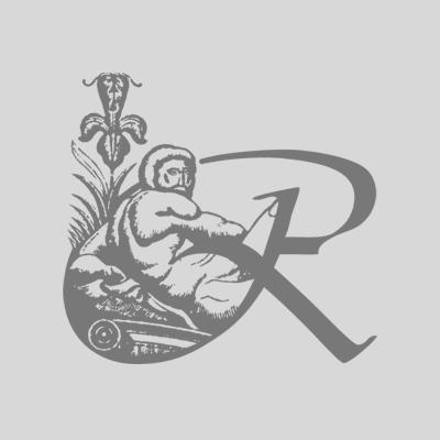 logo insr